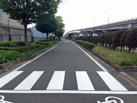 18旭川河川敷へ戻る.jpg