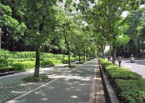 大安森林公園.jpg