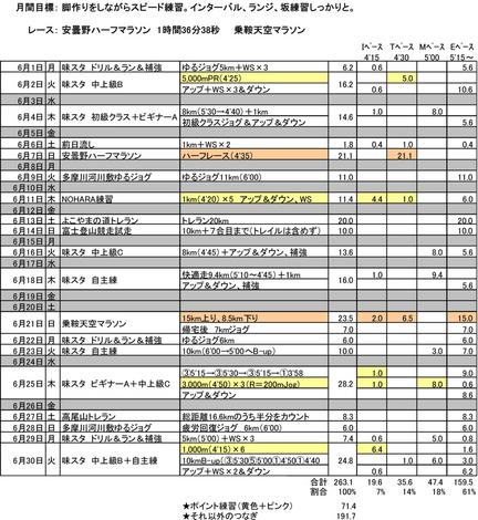 2015年6月のラン.jpg